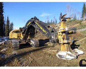 Tigercat 870C Feller Buncher
