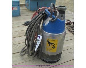Goulds Ditch Wizard pump