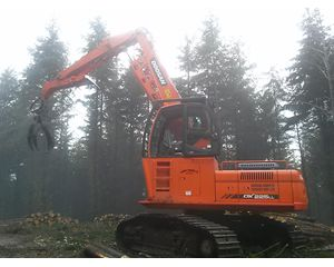 Doosan 225DX Log Loader