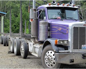 Peterbilt Longlogger Logging Truck