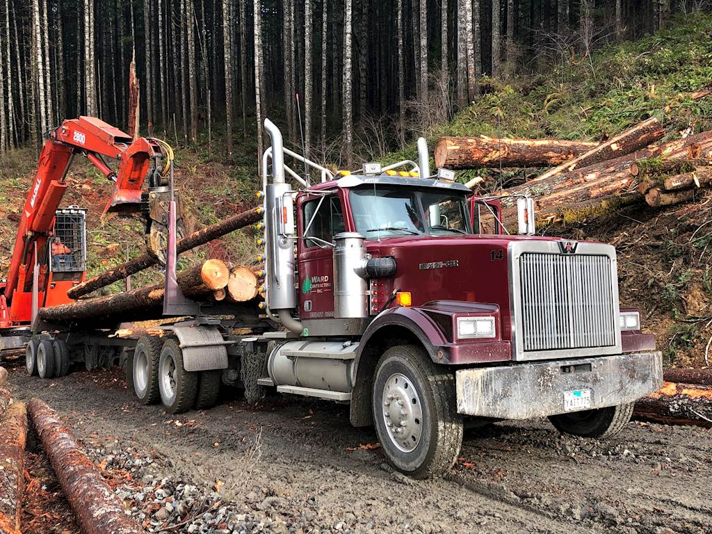 Logging-Trucks-Western-Star-4964-F-16614