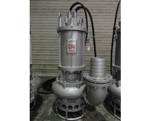 Toyo DP20B Pump