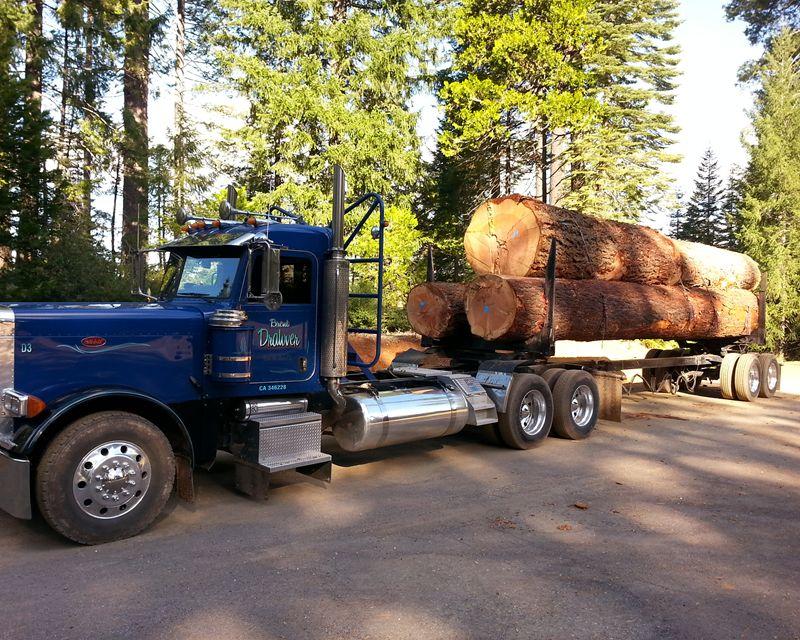 Peterbilt Log Trucks - Bing images