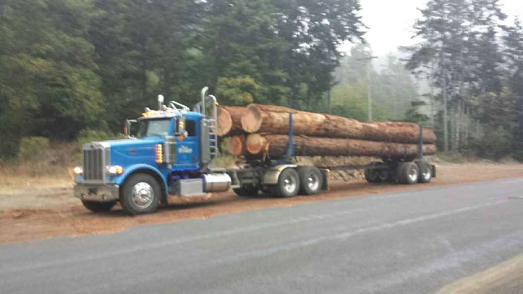 2006 Peterbilt 378 Logging Truck For Sale, 540,000 Miles ...