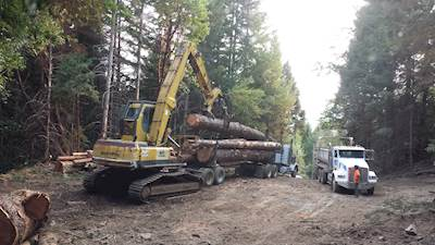 Tree And Landscape Equipment Trader
